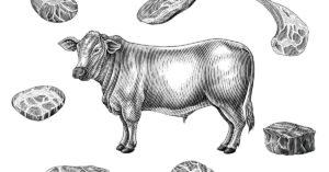 tagli pregiati bovino